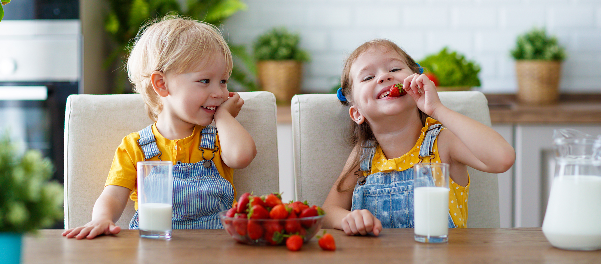Happy brother and sister eating strawberries with milk